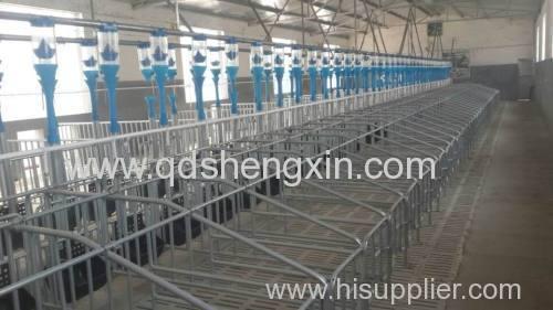 Automatic Pig Gestation Feeding system