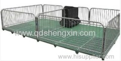 Shengxin Pimpi vivaio Crate
