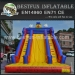TOP SALE Clown Inflatable Dry Slide