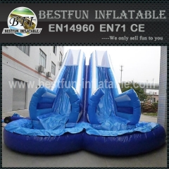 Plunge Inflatable Water Slide and Pool