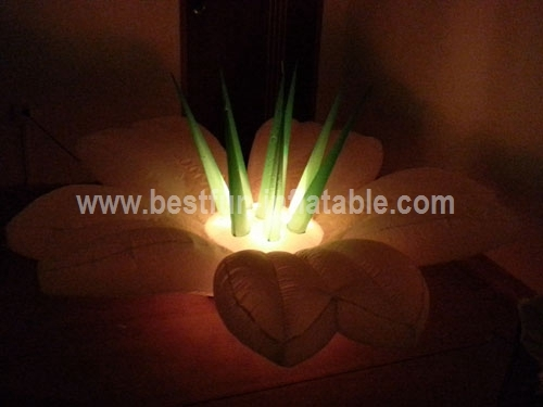 Giant Inflatable Flowers LED Light