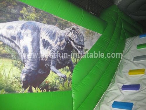 Giant Print Inflatable Dragon Theme Park