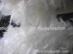 washed White duck feathers