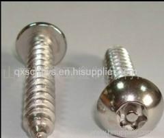 Tor pan head theft-proof screws