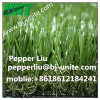 Leasuire Artificial Carpet Turf For Entertainment