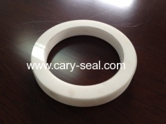 ceramic seal ring products