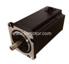 BRUSHLESS DC MOTOR (57)