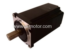 BRUSHLESS DC MOTOR (60)
