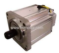 BRUSHLESS DC MOTOR (80)