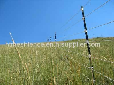 Metal T Post t bar fence post paint green t post metal t post manufacturer