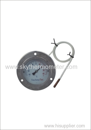 Baby Bath Thermometer glass