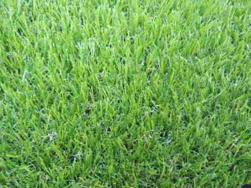 Landscaping Artificia turf Grass