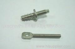 Stainless steel Special Screws .