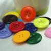 Fancy Coats Resin Button/Plastic Buttons