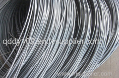 Building Material Hot Rolled Steel Wire Rod in Coil