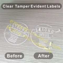 Clear Tamper Evident Labels