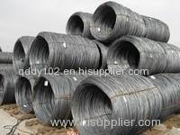 5.5mm Prime Hot Rolled SAE 1008B Low Carbon Mild Coils Steel Wire Rod
