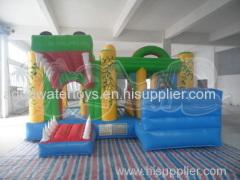 Frog Inflatable Combo Slide