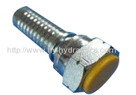 (BSP FEMALE 60degree CONE)hydraulic fitting