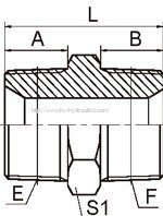NPT Hydraulic Male/BSPT Male Adapters