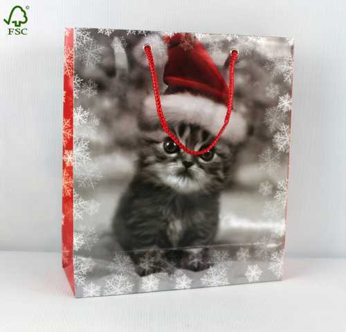 Cute kitty CHRISTMAS PAPER GIFT BAG