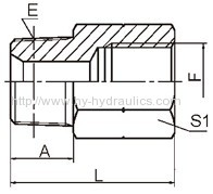 BSPT male/ BSP female Adapters