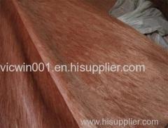 rotary bintangor wood veneer