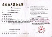 Business entity business license