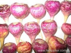 Top quality pure Peru maca increse erergy maca herbal supplement from Lijiang Yunnan