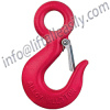 Eye Hook with Latch
