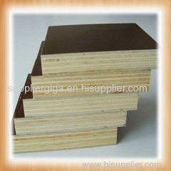Two times hot press film faced plywood manufacturer