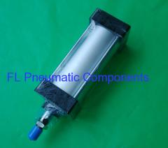 SC40X100 Standard Air Cylinder