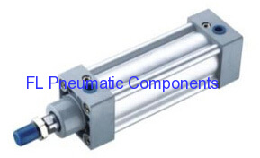 SI50X100 Standard Air Cylinders