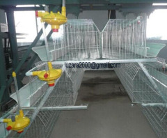Cheap Poultry Farm Layer Chicken cages