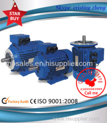 MS Three Phase Aluminum Housing Motor