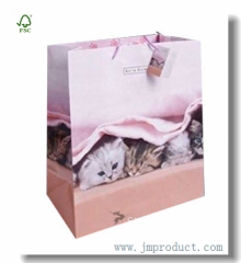 Large Gloss Paper Gift Bag Themed Little Kitty
