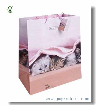 Large Gloss Paper Gift Bag Themed Little Kitty