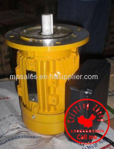 MC Single Phase Asynchronous Motor