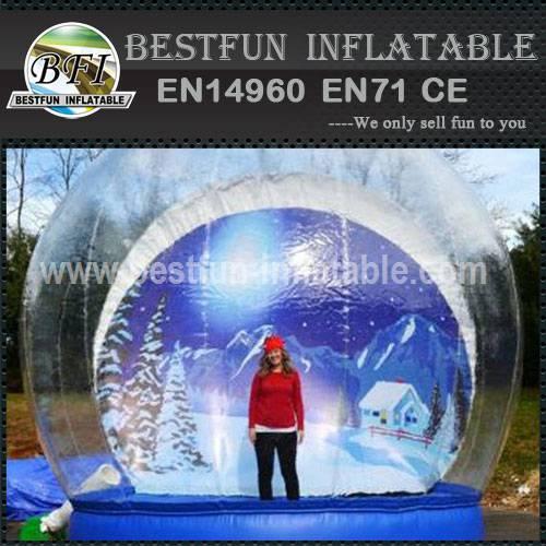 Snow Dome for Christmas