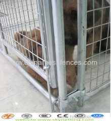 mesh dog kennel;welded mesh dog kennel;chain link mesh dog kennel;dog kennel