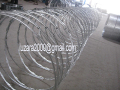 Bright colour Zinc-coating razor barbed wire