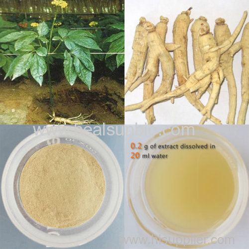 The Panaxatriol Saponins Rg1+Re 50% from Ginseng Leave extract
