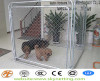 galvanized chain link dog kennel 50x50mm 60x60mm hole size
