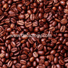 Cocoa seed P.E.Cocoa seed plant extract Cocoa seed extract