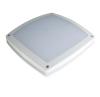 20W Waterproof Ceiling LED Canopy Light (IP65)