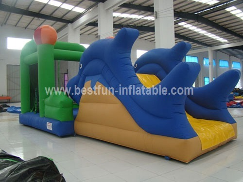 Sea world inflatable dolphin bouncy