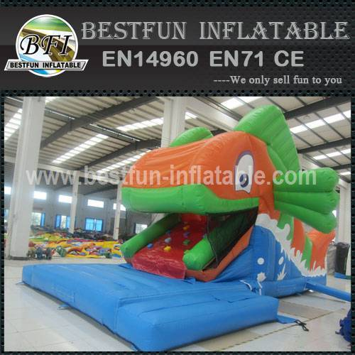 Fish eaters inflatable slide