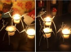 steel / deer model / lovely candelabrum