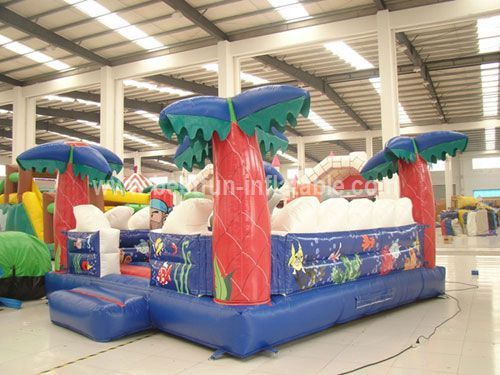 Giant Inflatable Dolphin Playground for Children