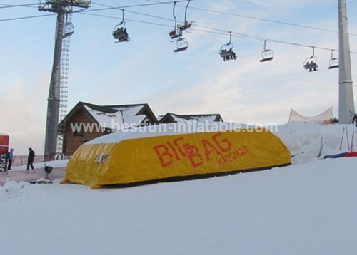 Advertisement Print Snowboard Cushion